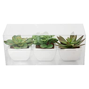 Product Image Ptted Faux Succulents - Set of 3