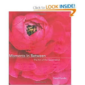 Moments in Between - Book