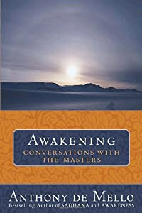 "Cover of ""Awakening: Conversations with t..."
