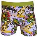 Ninja Turtles- boxer