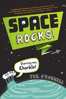 Space Rocks! by Tom O'Donnell| wearewordnerds.com