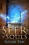 Seer of Souls (The Spirit Shield Saga Book 1)
