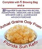 Four Tablespoons of Original KefirLife 100% Organic Water Kefir Probiotic Scoby Grains