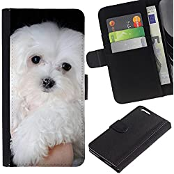 Maltese Dog White Small Longhair - Flip Credit Card Slots PU Holster Leather Wallet Pouch Protective Skin Case Cover Apple (5.5 inches!!!) iPhone 6+ Plus / 6S+ Plus