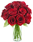 Red Rose of Passion Bouquet (One Dozen Long Stemmed) - With Vase