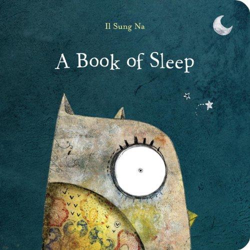 Book of Sleep