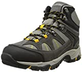 Hi-Tec Men's Altitude Lite I WP Hiking Boot, Charcoal/Warm Grey/Gold,10.5 W US