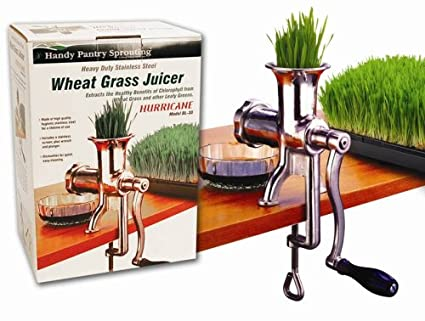 Guide To Choosing The Best Wheatgrass Juicer (2019 Edition) 4