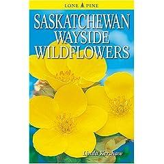 Saskatchewan Wayside Wildflowers