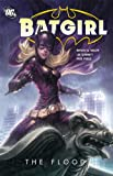Batgirl: The Flood (Batgirl (DC Comics))
