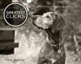Greatest Clicks: A Dog Photographer's Best Shots