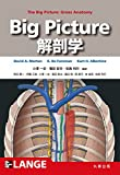 Big Picture 解剖学 (Lange Textbook シリーズ)
