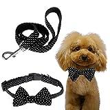 Itery Nylon Dog Collar Puppy Pet Collar Bow Walking Leash Set (Black, L)