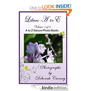 Picture Book Of Lilacs