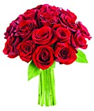 Bouquet of Long Stemmed Red Roses (Dozen and a Half) - Without Vase