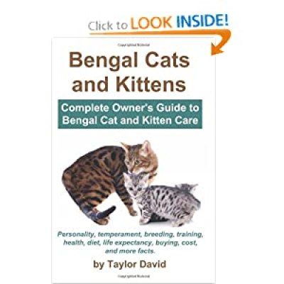 Bengal Cats and Kittens by Taylor David