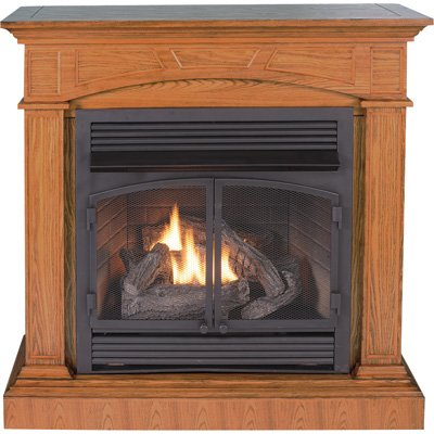 Best Price With Procom Dual Fuel Vent Free Fireplace With
