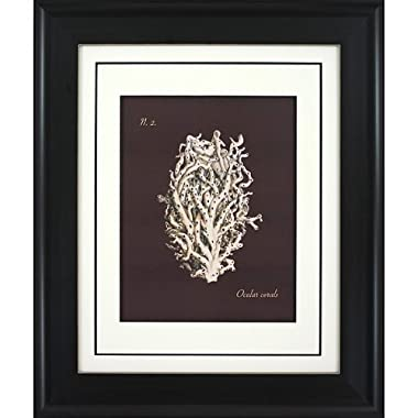 Product Image Coral on Branch B Wall Art - 16x20""