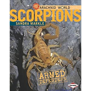 Scorpions: Armored Stingers (Arachnid World)
