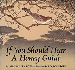 honey guide