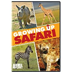 """ENTER TO WIN A COPY OF """"GROWING UP SAFARI"""" FROM ANIMAL PLANET / GENIUS PRODUCTS 3"""