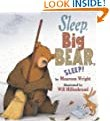Sleep, Big Bear, Sleep! by Maureen Wright and Will Hillenbrand