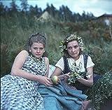 モスクワは涙を信じない HDマスターDVD北野義則ヨーロッパ映画ソムリエのベスト1982年