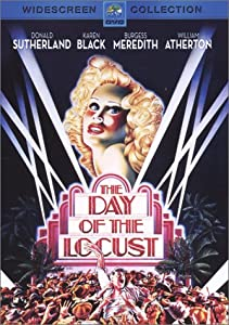"Cover of ""The Day of the Locust"""