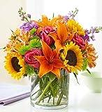 1-800-Flowers - Floral Embrace - Medium