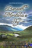 Beneath Montana's Sky: A Montana Sky Novella (Montana Sky Series)