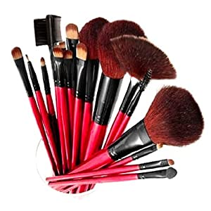 Shany Professional Cosmetic Brush Set with Pouch (Color May Vary), 13 pc.