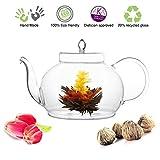 Tea Beyond Tea Set Teapot Polo 45 Oz/1330 Ml and English Breakfast Flowering Tea 4 Cts Blooming Tea Black Tea Gift