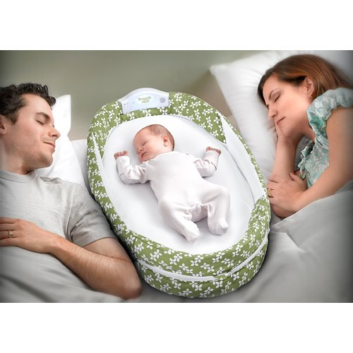 Baby Delight Snuggle Nest Surround