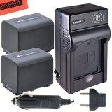 BM-Premium-Pack-of-2-NP-FV70-Batteries-Charger-Kit-for-Sony-FDR-AX53-HDR-CX455B-HDR-CX675B-HDR-CX330-HDR-CX900-HDR-PJ340-HDR-PJ540-HDR-PJ670B-HDR-PJ810-FDR-AX33B-FDR-AX100-Handycam-Camcorder