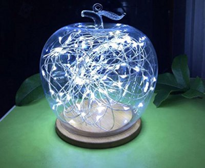 LED-Moon-Lights-20-Micro-Starry-LEDs-on-Silver-Wire-66-Ft-2m-for-DIY-Wedding-Centerpiece-or-Table-Decorations-Warm-White