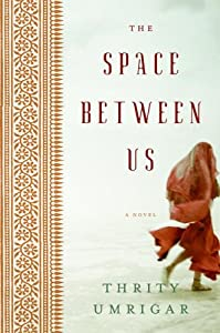 "Cover of ""The Space Between Us: A Novel"""