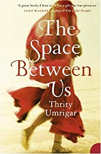 "Cover of ""The Space Between Us"""
