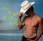 One Night with a Cowboy Cat Johnson Audiobook