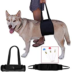 L&LH Dog Lift Harness with Handle (M, Black)