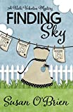 Finding Sky (A Nicki Valentine Mystery Book 1)