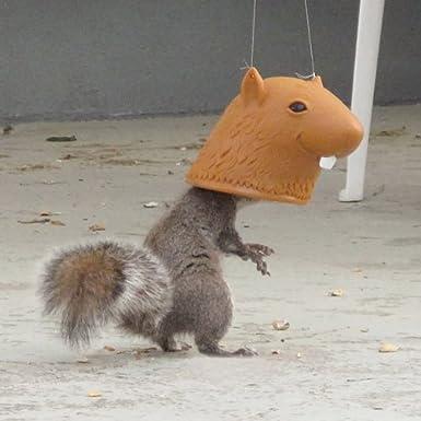 Big Headed Squirrel Feeder