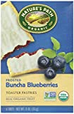 Nature's Path Frosted Toaster Pastry - Blueberry - 11 oz - 6 ct - 2 pk