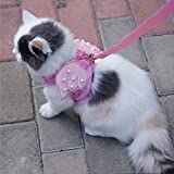 i'Pet® Adorable Comfort Cat & Dog & Kitty & Puppy Safety Walking Vest Harness + Matching Lead Leash Angel Wings Costume Lace Peals Design (Pink, X-Small)