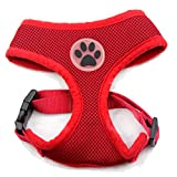 BINGPET BB5001 Soft Mesh Dog Harness Pet Walking Vest Puppy Padded harnesses Adjustable , Red Medium