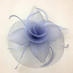 Eastabile Womens Big Flower Mesh Feather Hat Hair Clip Headwear Fascinator (one size, Light Blue)