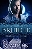 Brindle: Winter Valley Wolves #1