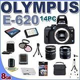 Olympus Evolt