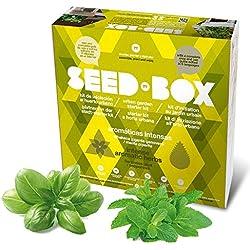 Seed Box SBCOAI - Huerto urbano de albahaca y menta (Colección Aromáticas intensas)