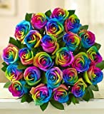 1-800-Flowers - Kaleidoscope Roses - 24 Stems Bouquet Only