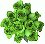 24 Stems - Fresh Cut Tinted Green Roses from Flower Explosion